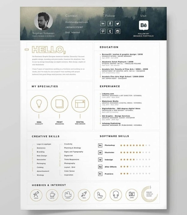 Fog Iconic Resume Template