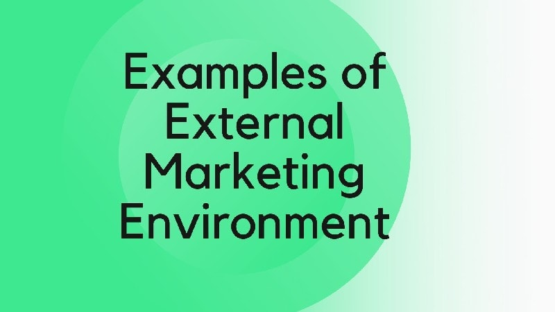 Examples of external marketing environment