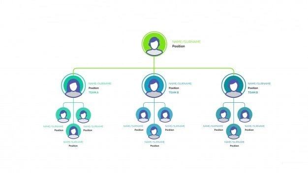 Types of an Organizational chart