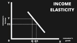 What is Income Elasticity - 1