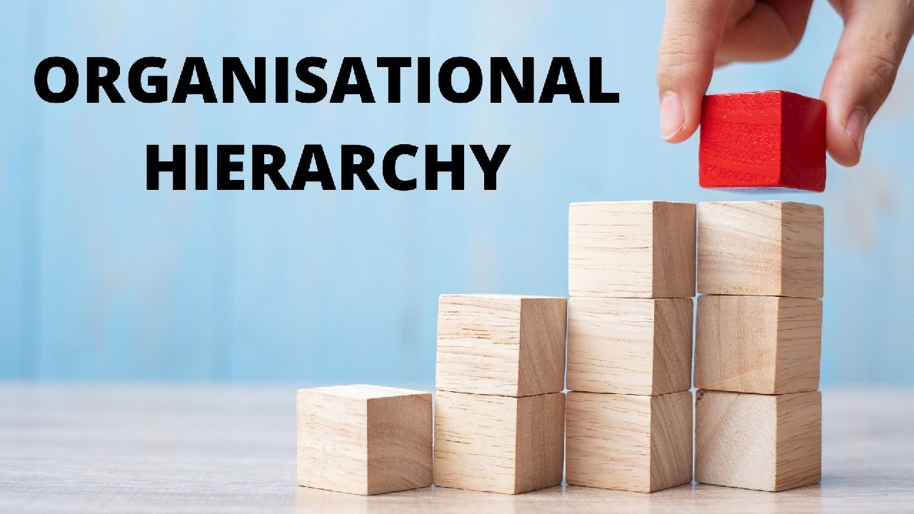 What is Organizational Hierarchy