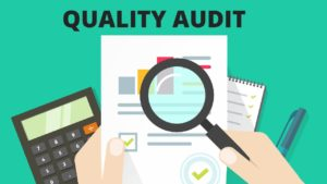 What is Quality Audit