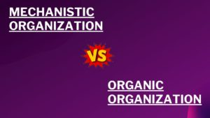 Difference between the mechanistic and an organic organization - 1