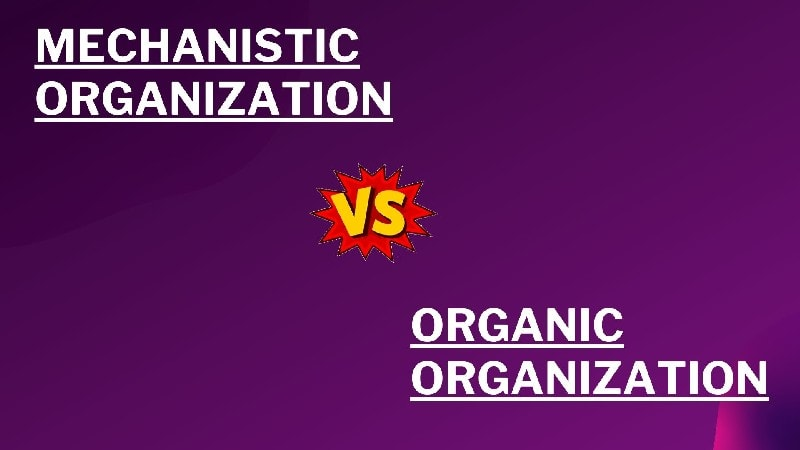 Difference between the mechanistic and an organic organization