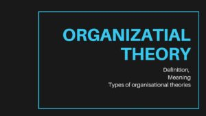 What is Organizational Theory