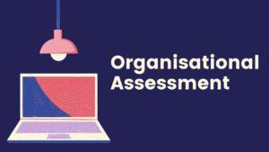 Organizational Assessment