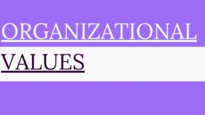 What is Organizational Values
