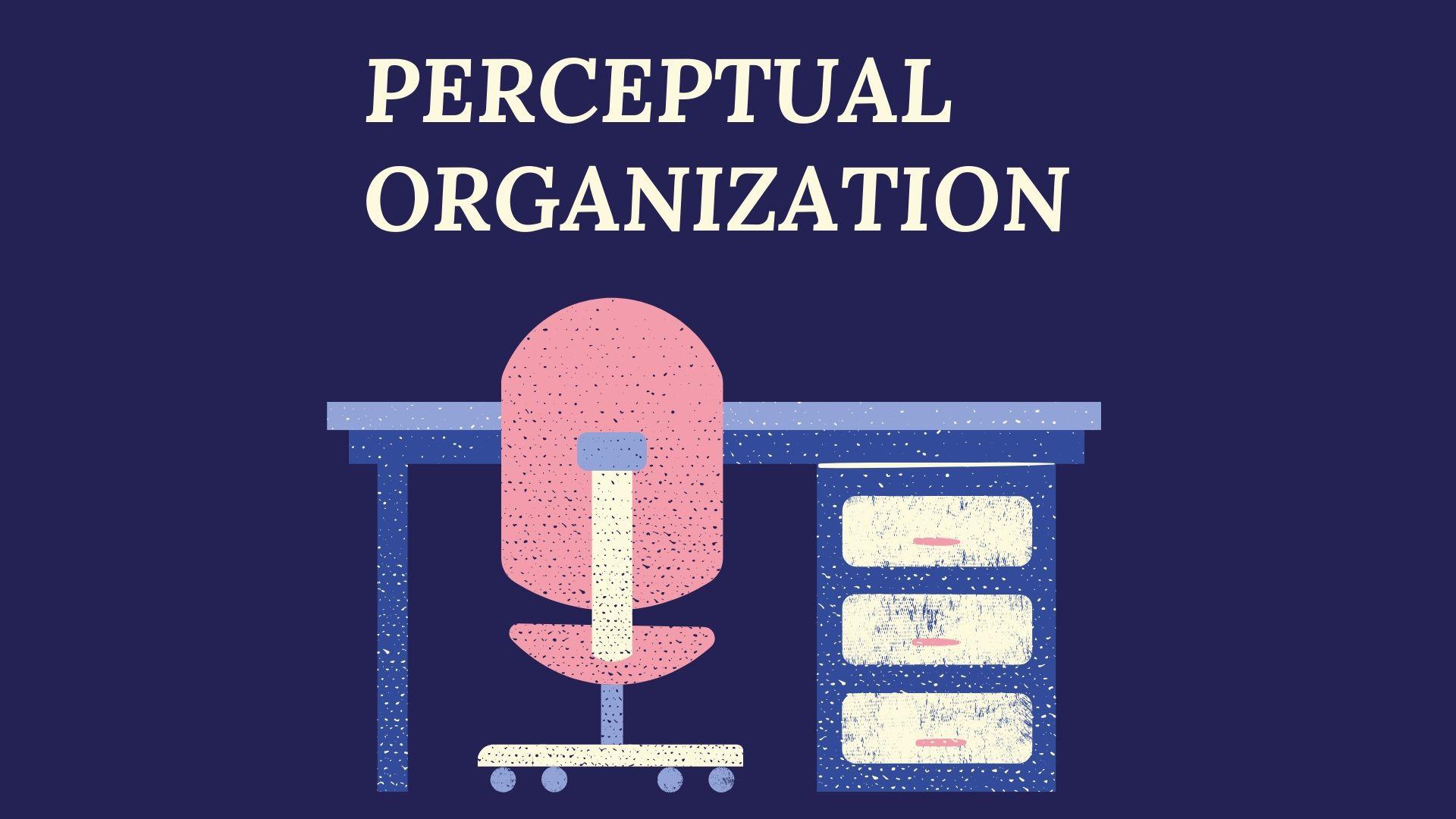 What is Perceptual Organizational