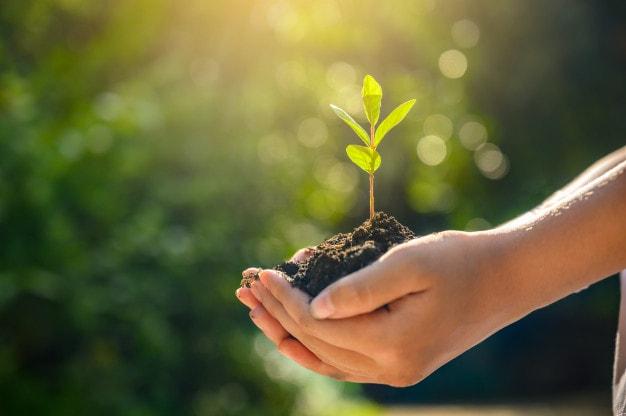 Goals of Sustainability