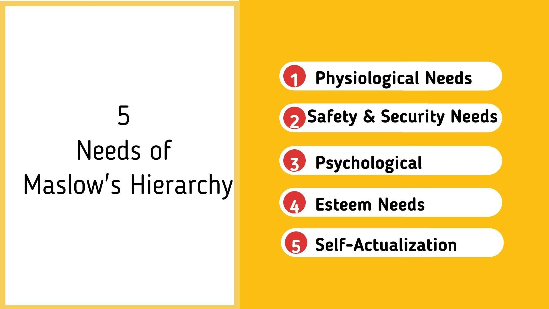 5 Needs of Maslow's Hierarchy