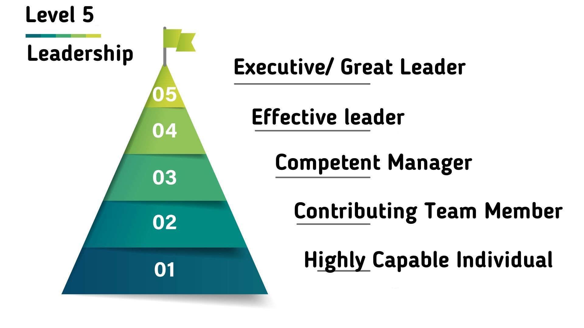 Hierarchy of Level 5 Leadership